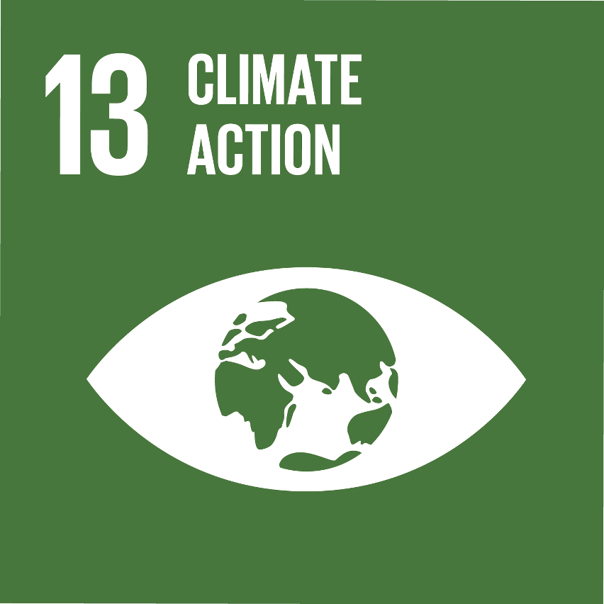 SDG Accelerator logo for Climate action